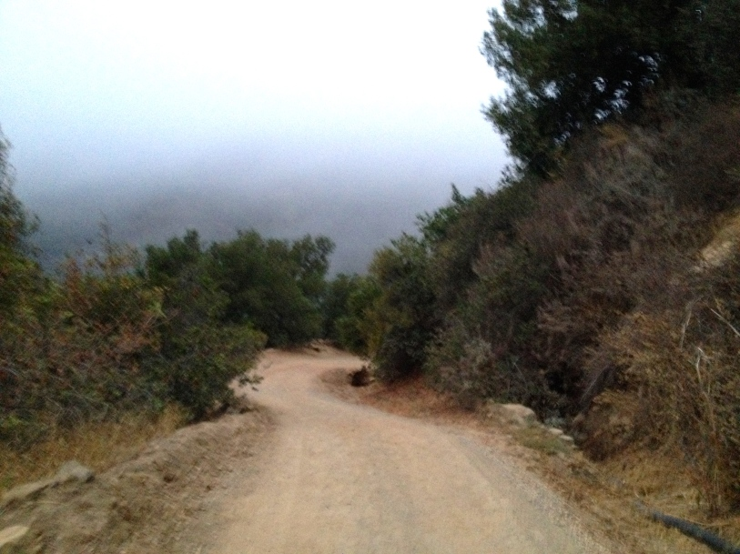 Hiking path in the Santa Ynez Mountains.